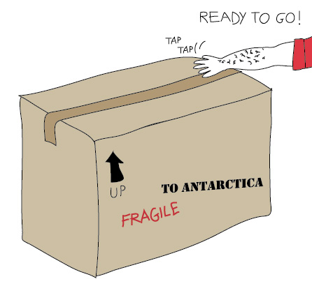 3-shipment
